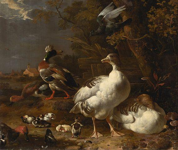 Melchior d' Hondecoeter, Ganzen en eenden van Meesterlijcke Meesters