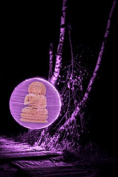 Orb with buddha van Nicole Wetzels