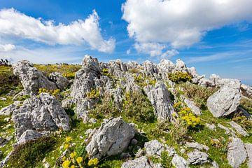 Berg met rotsen in landschap van Kefalonia Griekenland van Ben Schonewille