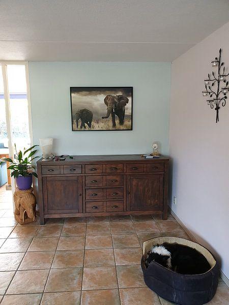 Kundenfoto: Elefantenmutter und Kalb von Marcel van Balken, auf leinwand