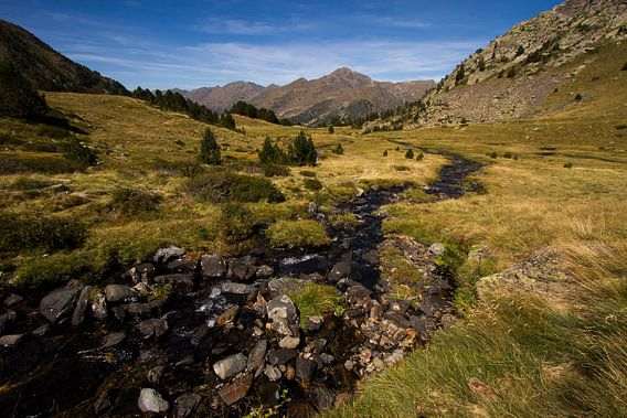 Een beekje loopt door de prachtige Pyreneeën