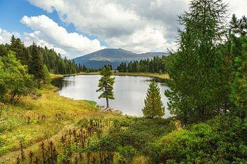 Turracher Schwarzsee von Coen Weesjes