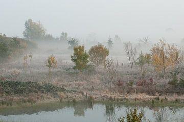 Mist in de Ooijpolder van Nancy van Verseveld