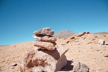 Zoutvlakte, Uyuni Bolivia van Stefanie Lamers