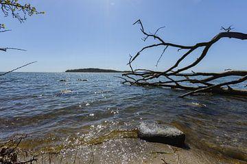 Natuurlijk strand in de Goor, Lauterbach op het eiland Rügen van GH Foto & Artdesign