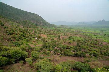 Ethiopië: Natuurgebied (Girana) van Maarten Verhees