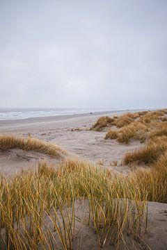 dunes, schiermonnikoog sur Jasper Verolme