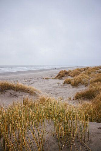 duinen, schiermonnikoog