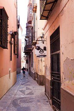 Straat in Malaga van Kees van Dun