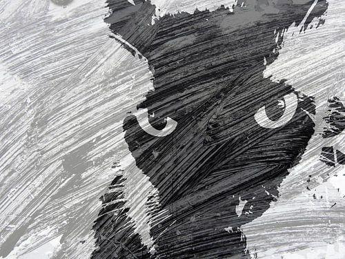 Kattenkunst - Storm 1 van