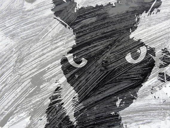 Kattenkunst - Storm 1 van MoArt (Maurice Heuts)