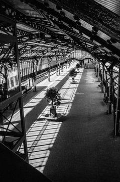 Station 's-Hertogenbosch von Lieke Roodbol