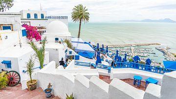Weiße Häuser in Sidi Bou Said von Jessica Lokker
