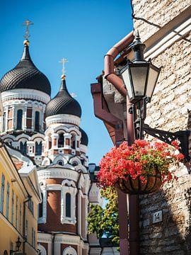 Tallinn - Alexander Nevsky Cathedral van