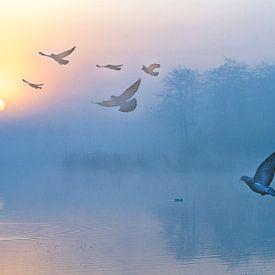 Zonsopkomst in het Twiske met opvliegende vogels van Rietje Bulthuis
