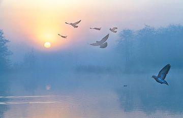 Sonnenaufgang in der Twiske mit fliegenden Vögeln von Rietje Bulthuis