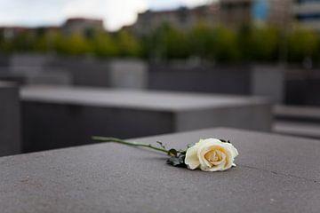 Holocaust Monument, Berlijn van Kees van Dun