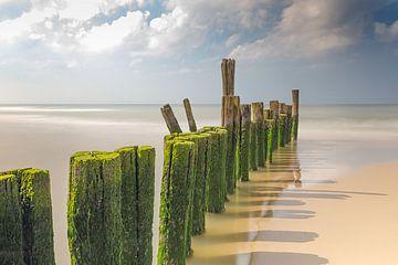 Golfbrekers langs de kust van Apple Brenner