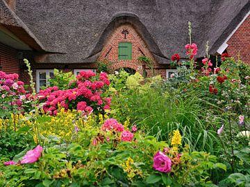 Verschwenderische Blütenpracht im Bauerngarten von Gisela Scheffbuch