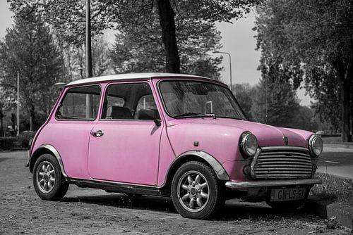 Roze MINI van Ronald George