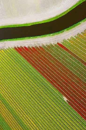 Gulgrön, röd, kanal.  van Anders Andersson