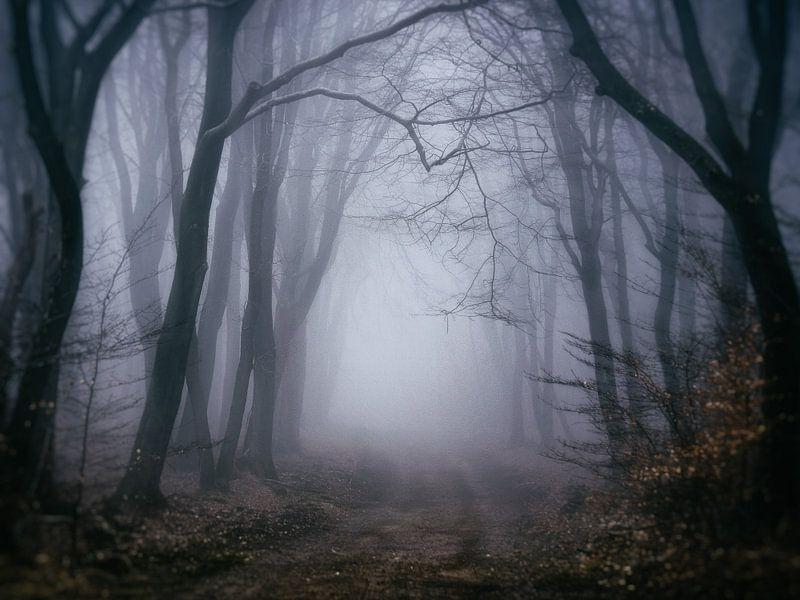 Diepe eenzaamheid van Tvurk Photography