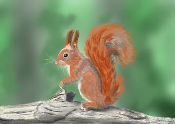 Eichhörnchen von Hans van Gurp