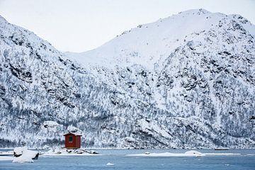 Noors hutje in sneeuw landschap - Vesteralen / Lofoten, Noorwegen von Martijn Smeets