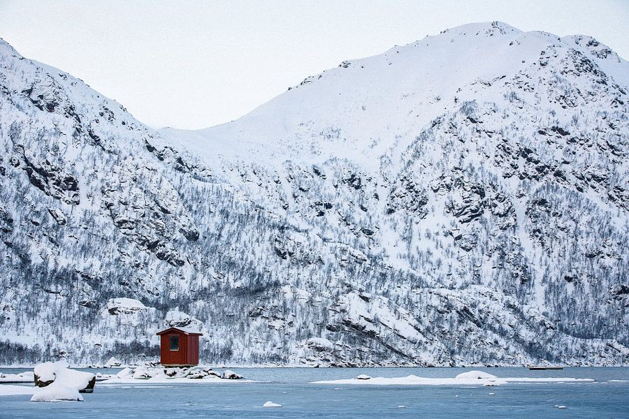 Noors hutje in sneeuw landschap - Vesteralen / Lofoten, Noorwegen