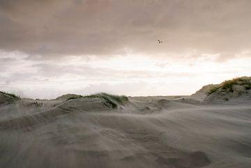 Storm duinen Oosterend Terschelling van Gerard Roos