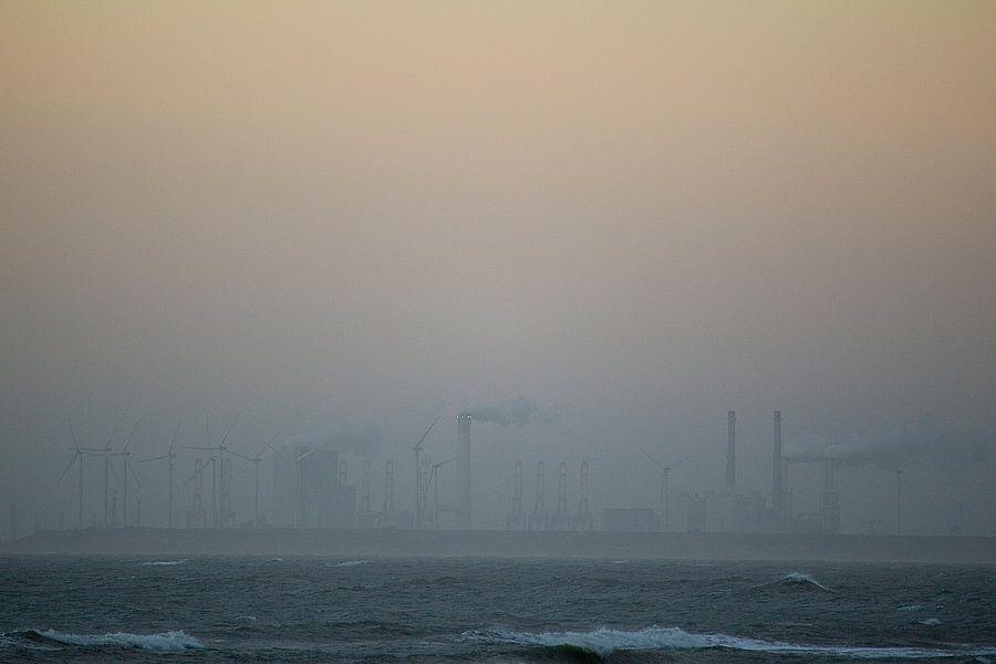 Dutch beach in the fog