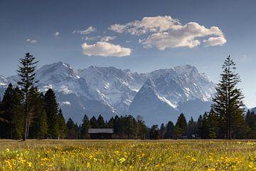 Frühling im Werdenfelser Land mit Blick zur Zugspitze