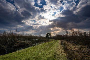 Mariapeel Limburg van Jeroen Mikkers