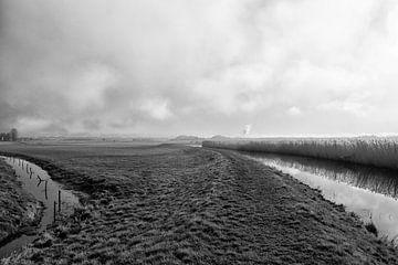 Polder im Nebel von Annette van Dijk-Leek