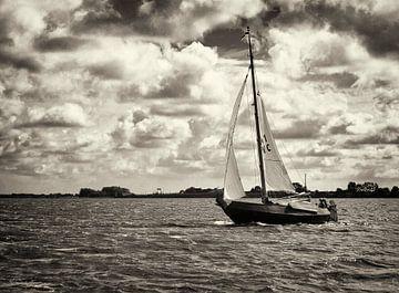 Schokker Albatros op het Lauwersmeer von Steven Boelaars