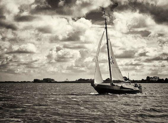 Schokker Albatros op het Lauwersmeer