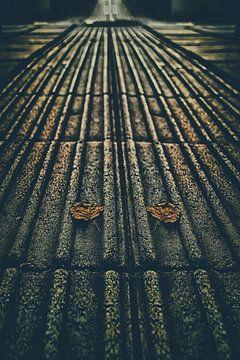 Een blindegeleideweg van Elianne van Turennout