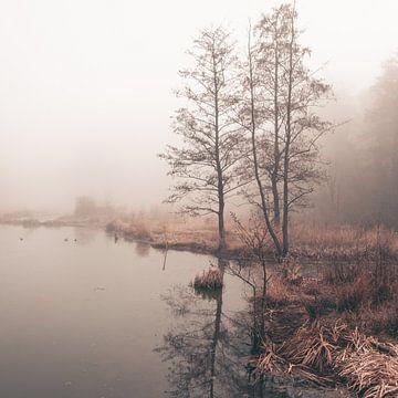 an der Uferpromenade im Nebel von Marlies van Zetten
