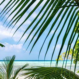 Tropisch uitzicht over de zee Salomon eilanden van Ron van der Stappen