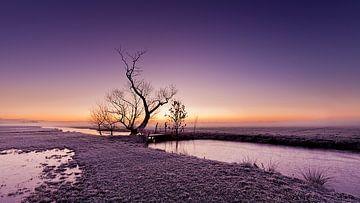 Sonnenaufgang in der Alblasserwaard von Halma Fotografie
