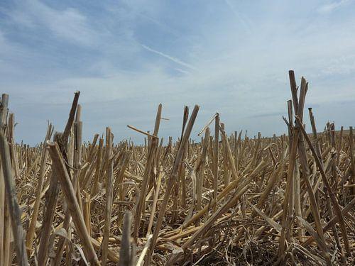 Akker met een stoppel veld in de graanstreek van Frankrijk van