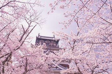 Schloss inmitten von Kirschblüten von Mickéle Godderis