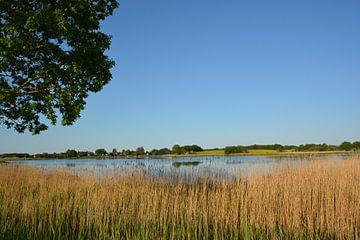Wreech-meer bij Neukamp, Putbus op het eiland Rügen van GH Foto & Artdesign