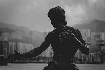 Bruce Lee sur Patrick Verheij