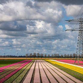 Hoogspanningsmast te midden van tulpen van Margreet Frowijn