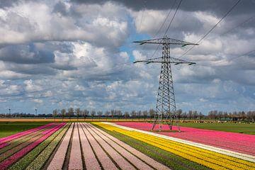 Hochspannungsmast inmitten von Tulpen von Margreet Frowijn