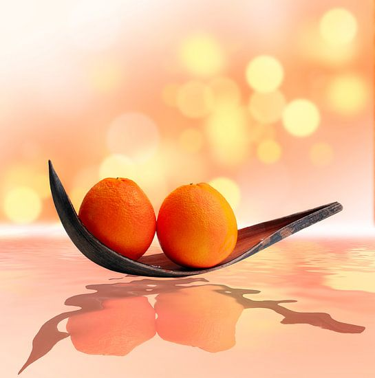 Sinaasappelen magische land