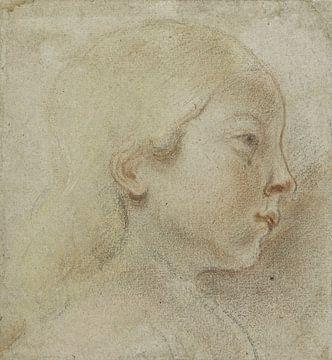 Kopf nach rechts, Jacob Jordaens (I), 1603 - 1678