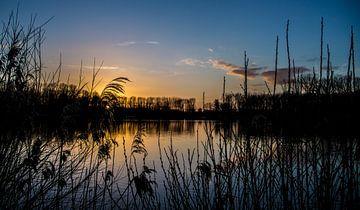 Zonsondergang aan de Gavers, Geraardsbergen von Ronald De Neve