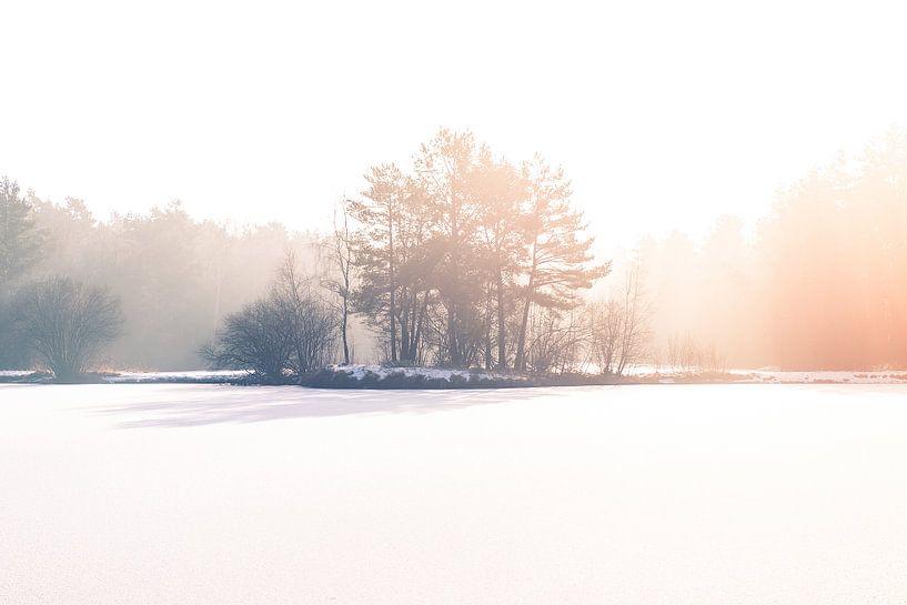 Bevroren van Ratna Bosch